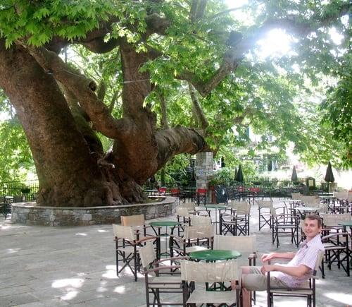 Tsagarada plane tree