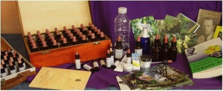 Bach Flower Essences Kit