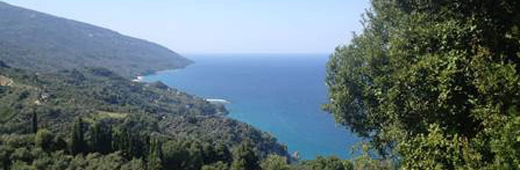 pelion sea forest